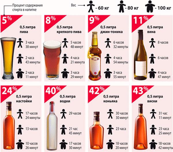 Таблица - через сколько выветривается алкоголь из организма